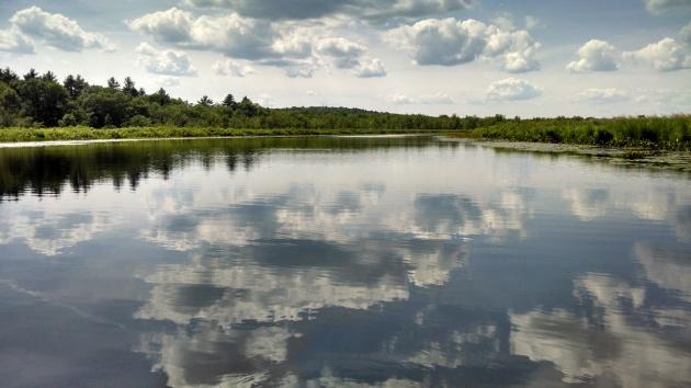 Water Panorama